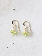 14KGF peridot  pierce